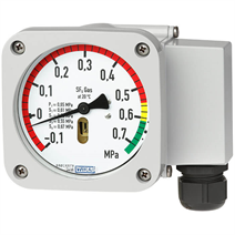Gas density monitor with reference chamber